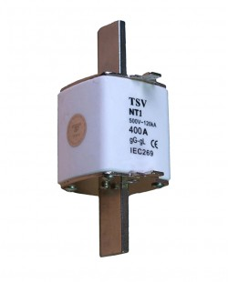 Siguranta fuzibila NT1 100A