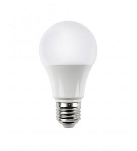 Bec LED A65 12W E27 6500K